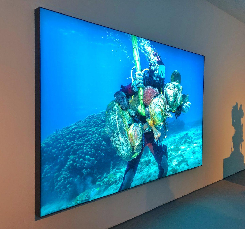 מוזיאון חיפה לאמנות תערוכה פייק ניוז אוצרות הספינה הטרופה שלא תיאמן דמיאן הירסט3