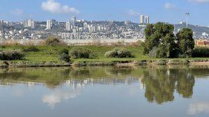 נוף פארק הקישון חיפה נחל הקישון