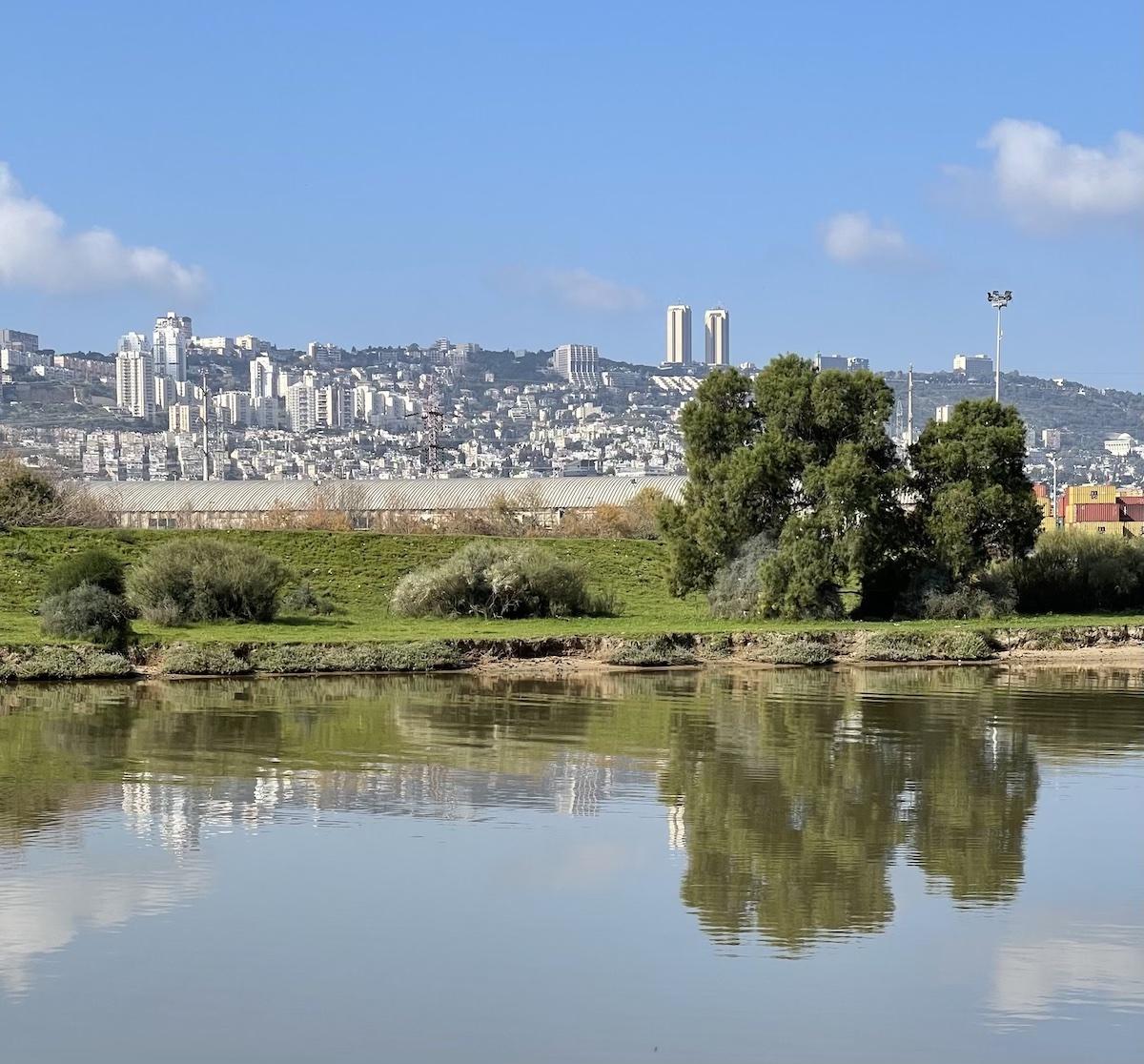 סלסלת פיקניק בראנץ׳ פארק הקישון חיפה שירי ויצנר3