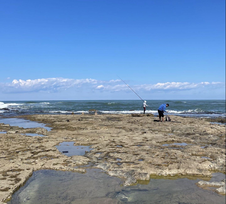 חוף שקמונה חיפה