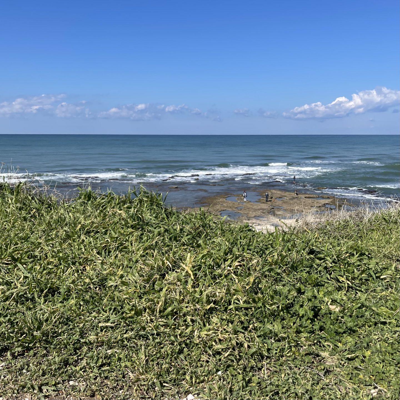 חוף שקמונה