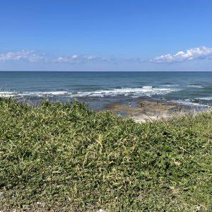 נוף טבע ירוק וים בחיפה