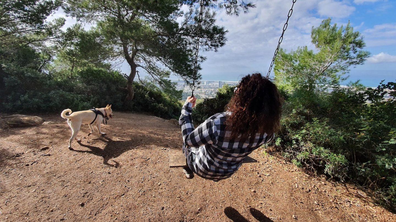 טיול בחיפה עם כלבים 9