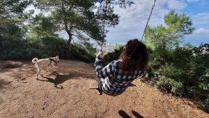 אישה מתנדנדת בנדנדה ביער בחיפה עם כלב