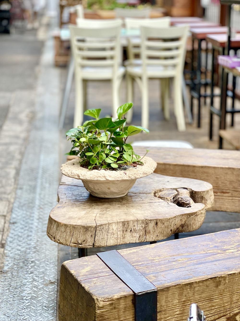ישיבה מסעדת שוק פיצרייה תלפיות חיפה